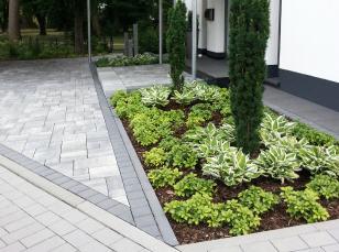 architektonisch-moderner-garten-mit-pflanzen-und-pflatersteinen