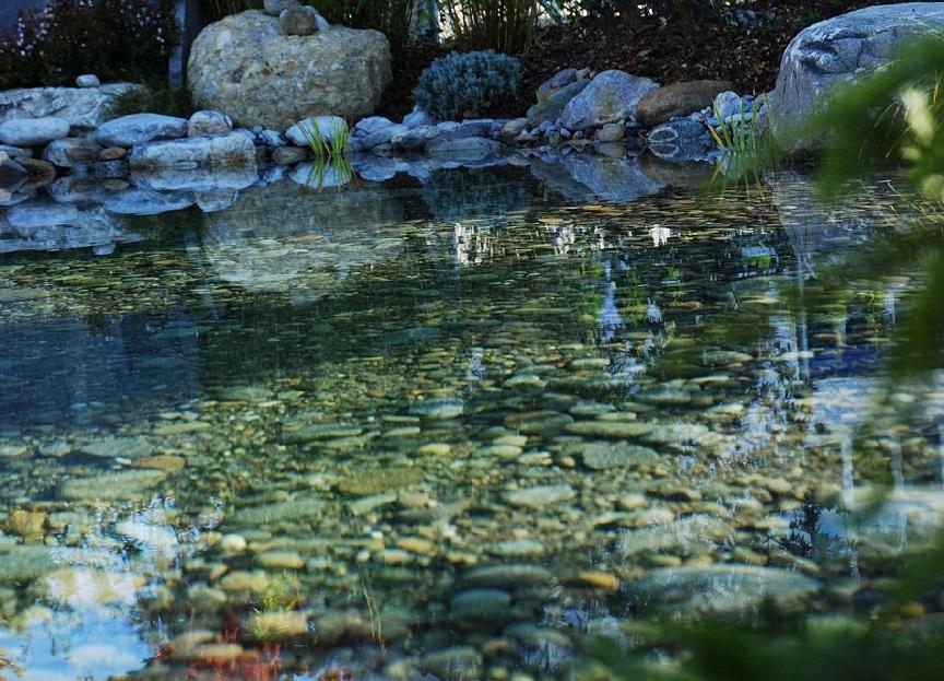 Teichanlage von garterra